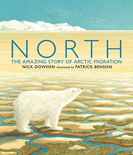 9780763666637: North: The Amazing Story of Arctic Migration
