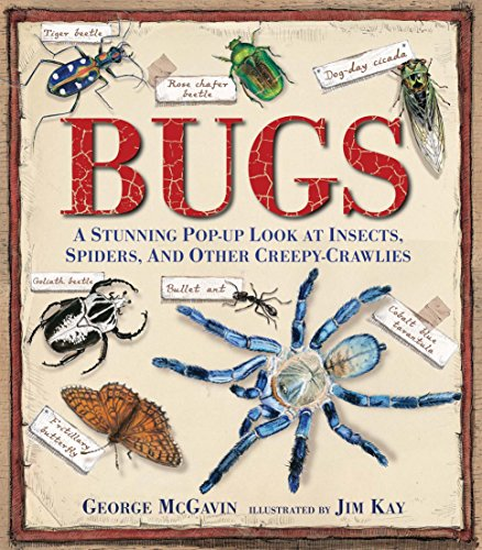 9780763667627: Bugs: A Stunning Pop-Up Look at Insects, Spiders, and Other Creepy-Crawlies
