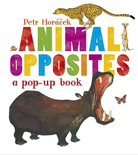 9780763667764: Animal Opposites