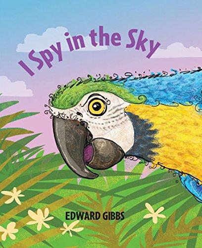 9780763668402: I Spy in the Sky