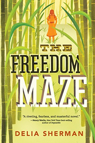 9780763669751: The Freedom Maze