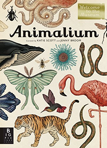 9780763675080: Animalium (Welcome to the Museum)