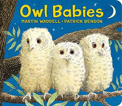 9780763679613: Owl Babies