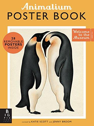 9780763693183: Animalium Poster Book