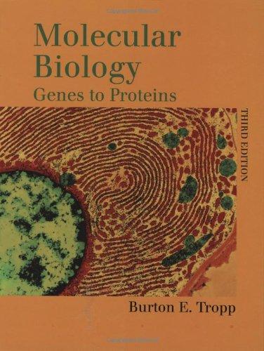 9780763709167: Molecular Biology: Genes to Proteins