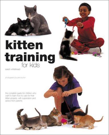 Kitten Training For Kids: Sarah Whitehead; Photographer-Jane