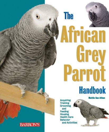 9780764141409: The African Grey Parrot Handbook