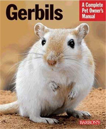 9780764144295: Gerbils (Pb)