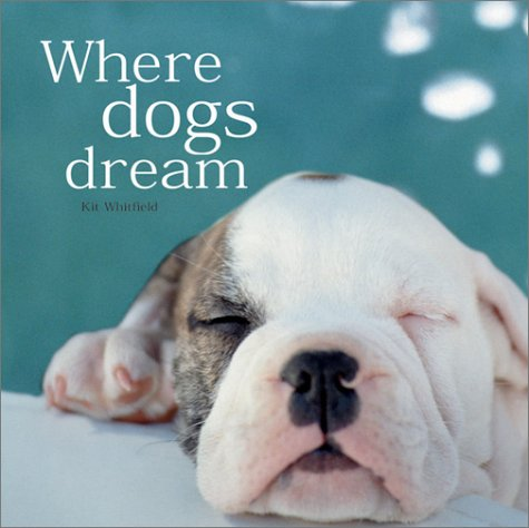 9780764156403: Where Dogs Dream