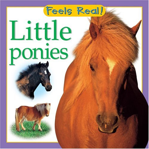 9780764158551: Little Ponies (Feels Real Books)
