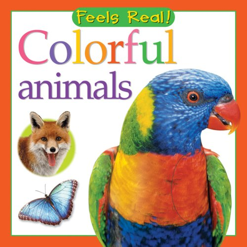 9780764160257: Colorful Animals (Feels Real Series)