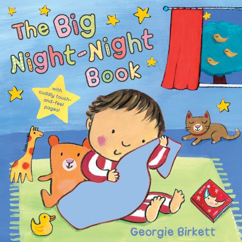 9780764162343: The Big Night-Night Book