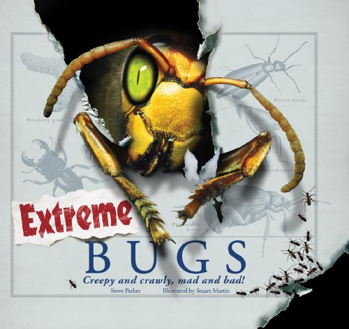 9780764162886: Extreme Bugs: Creepy and Crawly, Mad and Bad!