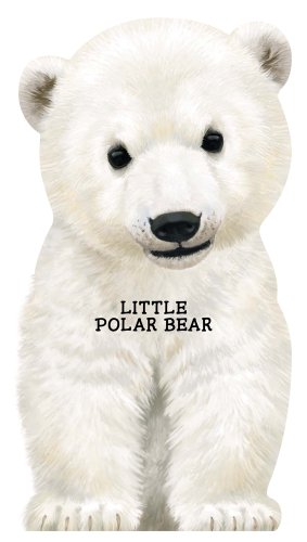 Little Polar Bear (Look at Me Books)