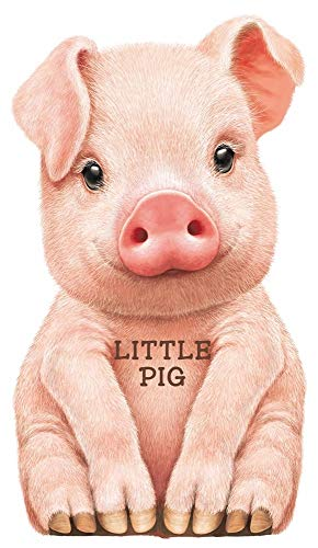 Look At Me: Little Pig