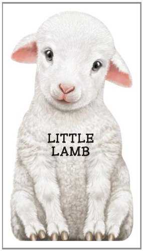 9780764164279: Little Lamb (Look at Me Books)