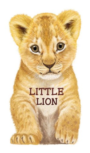 9780764165252: Little Lion (Look at Me Books)
