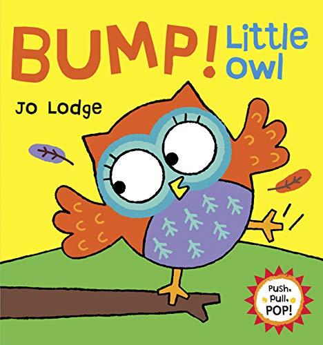 Bump! Little Owl (Push, Pull, POP! Books): Lodge, Jo