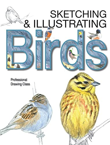 9780764167911: Sketching & Illustrating Birds: Professional Drawing Class