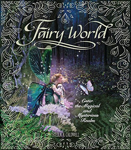 9780764168208: Fairy World: Enter the Magical and Mysterious Realm