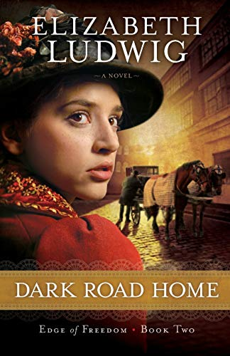 9780764210402: Dark Road Home (Edge of Freedom) (Volume 2)