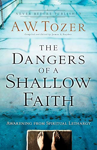 9780764216169: The Dangers of a Shallow Faith: Awakening from Spiritual Lethargy