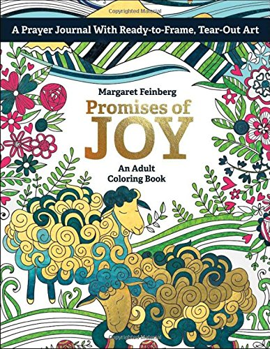 Promises of Joy: An Adult Coloring Book: Feinberg, Margaret