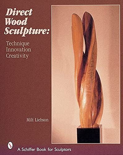 9780764312991: Direct Wood Sculpture: Techniques, Innovation, Creativity