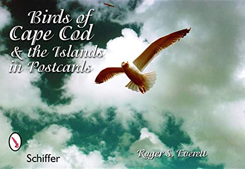 9780764324482: Birds of Cape Cod & the Islands in Postcards
