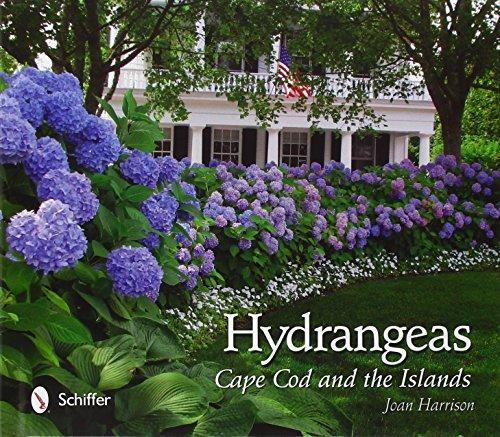 Hydrangeas: Cape Cod and the Islands Joan