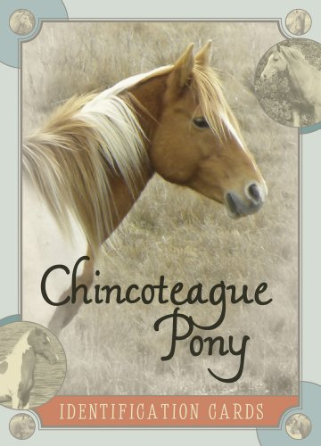 9780764344534: Chincoteague Pony Identification Cards