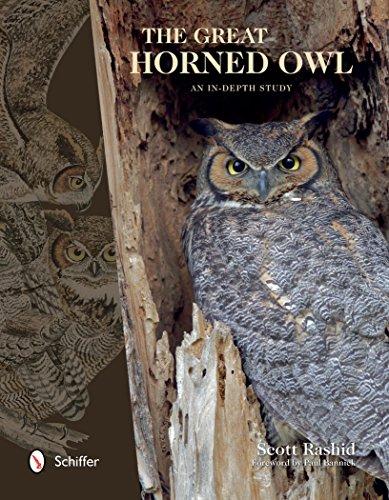 The Great Horned Owl: An In-depth Study: Scott Rashid