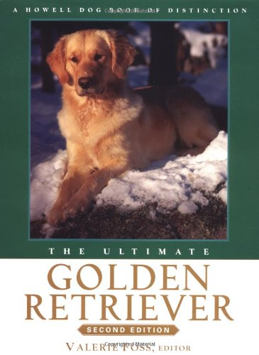 9780764526381: The Ultimate Golden Retriever
