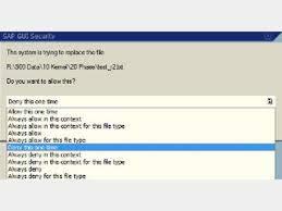 9780764546785: The Official Synactive Guixt Starter Kit for Enjoy Sap