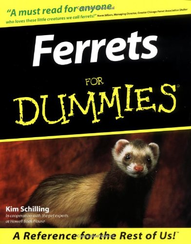 9780764552595: Ferrets For Dummies