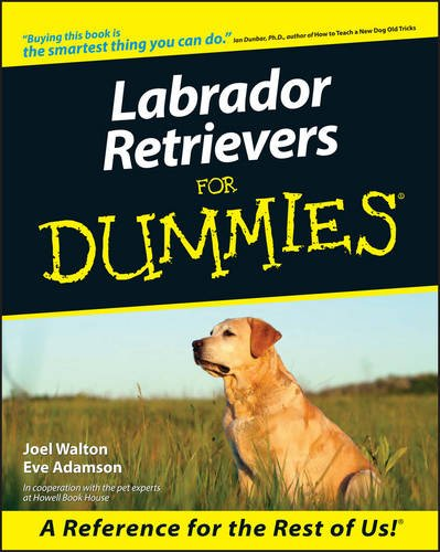 9780764552816: Labrador Retrievers For Dummies