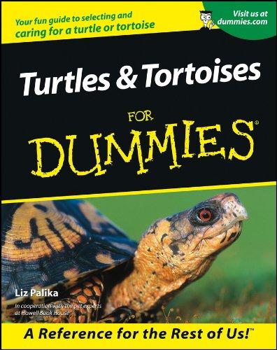 Turtles and Tortoises For Dummies: Palika, Liz