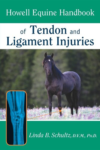 9780764557156: Howell Equine Handbook of Tendon and Ligament Injuries (Howell Equestrian Library (Paperback))
