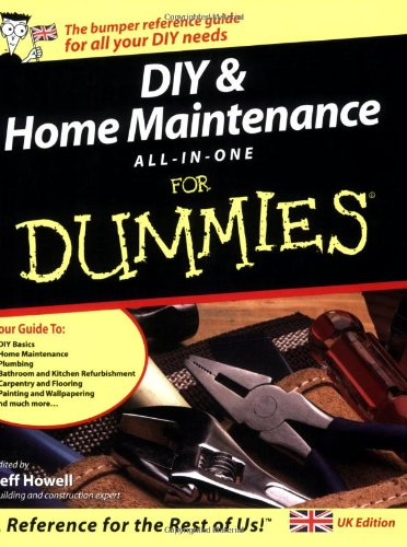 9780764570544: DIY and Home Maintenance All-in-one For Dummies