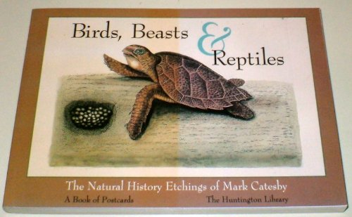 9780764903687: Birds, Beasts and Reptiles: The Natural History Etchings of Mark Catesby (Postcard Books)