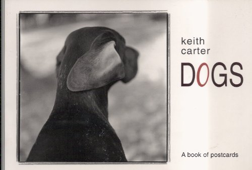 9780764924644: Dogs: A Book of Postcards