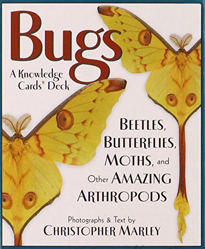 9780764932014: Bugs: Beetles, Butterflies, Moths, and Other Amazing Arthropods Knowledge Cards Deck