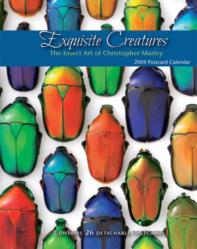 Exquisite Creatures: The Insect Art of Christopher Marley, 2009 Postcard Calendar