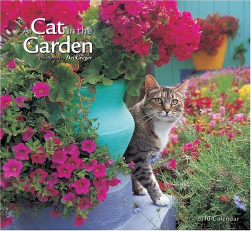 9780764947445: A Cat in the Garden