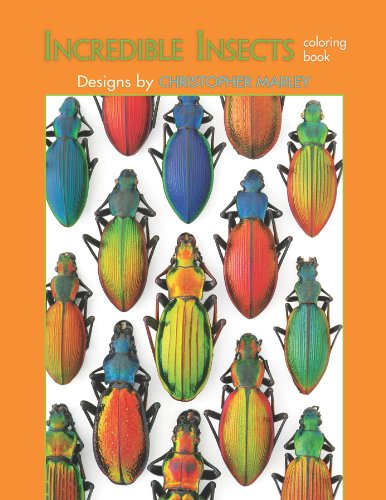9780764953224: Incredible Insects: Designs by Christopher Marley Coloring Book