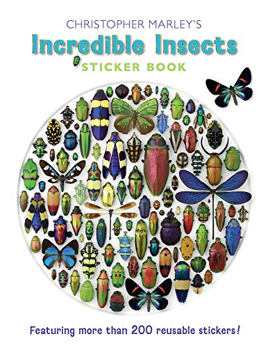 9780764963469: Incredible Insects