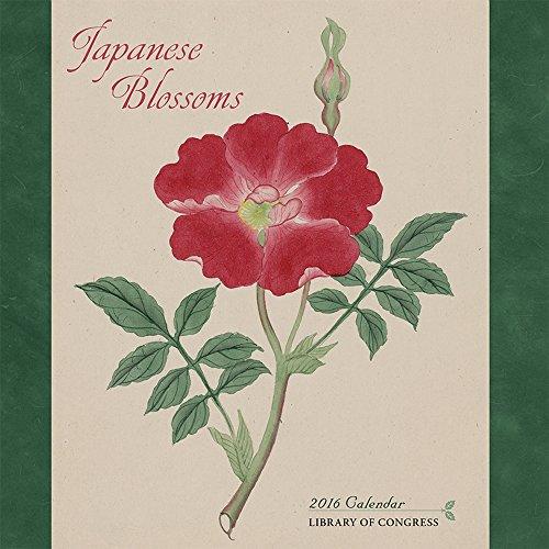 9780764970603: Japanese Blossoms 2016 Calendar