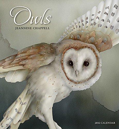 9780764970986: Chappell/Owls 2016 Calendar