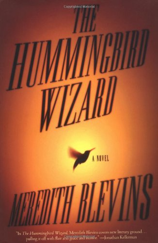 9780765307699: The Hummingbird Wizard