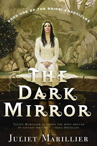 9780765309983: The Dark Mirror (Bridei Chronicles)